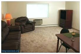 college living room decorating ideas. College Living Room Ideas Apartment Rooms Idea Decorating N