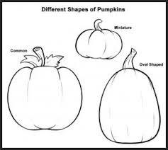 pumpkin drawing. step 1 pumpkin drawing