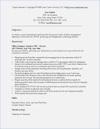 Objectives For Resumes Examples Of Objectives On Resumes buildbuzz 33