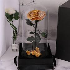 real natural fresh big rose preserved flower preserved everlasting real roses in glass dome for