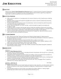 Sales Objectives For Resumes Setting Examples Resume Objective