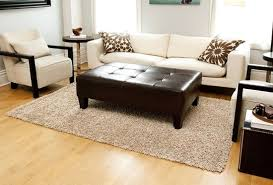 picture of anji mountain bamboo rug co 3 x 5 silky