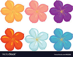 diffe colours royalty free vector image