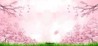 Cherry Blossom Background Photos Cherry Blossom Background