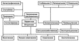 Влияние деятельности человека на биосферу Рефераты ru Рис 2 Схема видов загрязнений