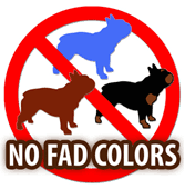 French Bulldog Color Chart French Bulldog Fad Colors Explained French Bull Dog Club