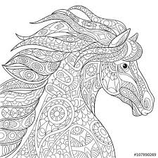 Small Picture Trendy Idea Horse Coloring Pages For Adults Best 25 Horse Ideas On