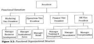 What Are The Different Patterns Used In Departmentalization