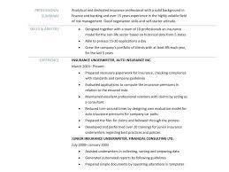 Download Underwriter Resume Sample Haadyaooverbayresort Com