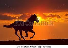 horses running in the sunset. Unique Horses Horse Running At Sunset  Csp15540226 And Horses In The