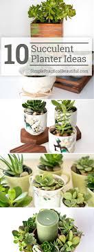 10 Succulent Planter Ideas