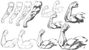 how to draw and shade muscular arm poses ic book style step by step promo video