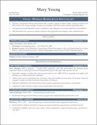 It Resume Summary Examples Medical Example Mechanic 2015 Vozmitut
