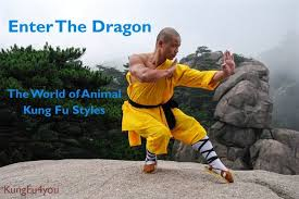 Enter The Dragon The World Of Animal Kung Fu Styles