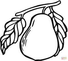 Small Picture Pear 14 coloring page Free Printable Coloring Pages