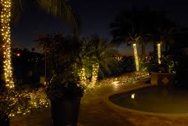 lighted palm trees by outdoor lighting perspectives of naples