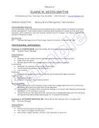 Resume Format For Banking Sector For Freshers Resume Online Builder