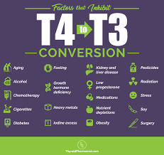 Armour To Synthroid Conversion Chart Which Thyroid Medication Is Best Dr Izabella Wentz