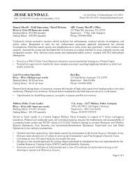 federal resume samples format