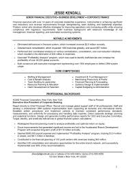 Example Of Finance Resume Chief Financial Officer Resume Example Beautiful It Executive Resume 10