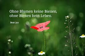 Bildersprüche Blumenbilder Mit Zitaten Und Kurzen Weisheiten