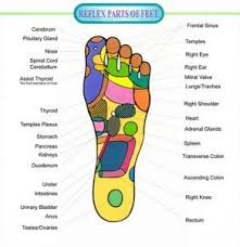 Pressure Points In Feet Foot Chart Foot Pressure Points