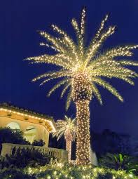 decorative palm trees with lights unbelievable artificial pictures reference home interior 3