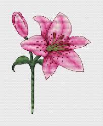 Tiger lily cross stitch pattern Floral cross stitch patterns   Etsy in 2021    Floral cross stitch, Floral cross stitch pattern, Cross stitch flowers
