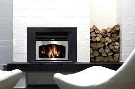 fireplace inserts wood napoleon wood burning fireplace inserts reviews fireplace insert wood stove blower
