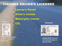Online Driver's Ppt Licenses - Download Virginia Video