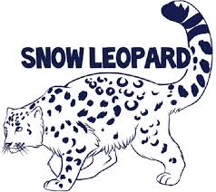 Animal Jam Coloring Pages Snow Leopard New 26 Animal Jam Coloring