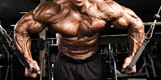 Cable Crossover Exercise Bodybuilding Wizard