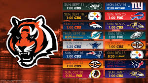 bengals wallpaperbeautiful bengals wallpaper 1920x1080 pic wpxh67656 1024x576 bengals
