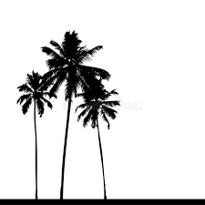 palm tree silhouette black stock vector ilration of painting 5464312