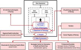 stakeholders in healthcare stakeholder model five level model of stakeholders in the