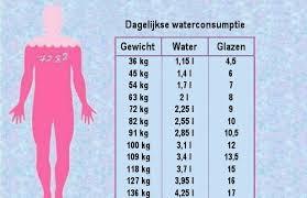 Hoeveel liter water per dag om af te vallen