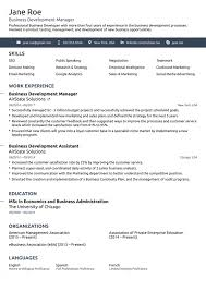 Free Professional Resume Template Beauteous Resume Templates Good Best Professional As They Should Template Word