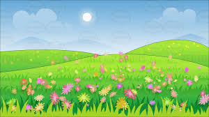 grass field background with flowers. A Beautiful Field Of Wild Flowers Background Grass With R