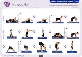 vinyasa hatha beginners cl 3