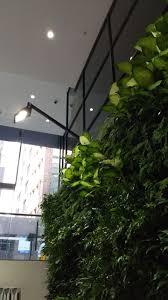 green wall lighting. green wall lighting