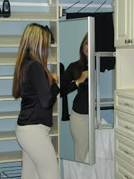 pull out mirror spacemanager closetstransitional closet houston