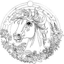 Small Picture Amazing Animal Horse Mandala Coloring Pages Batch Coloring
