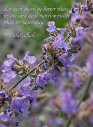 Purple Flower Quotes Exploring Photoshop My First Creation Elika Mahony Vocalist