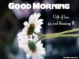 Sms Good Morning Quotes Best of Good Morning SMS Text Messages Good Morning SMS In English