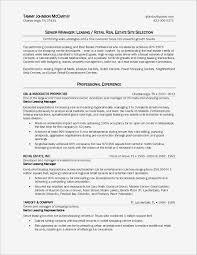 Sample Real Estate Resume New Real Estate Agent Job Description For