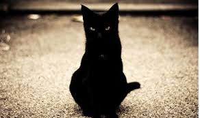 Image result for images friday 13th