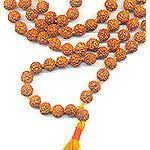 Wholesale: Rudraksha Mala 108 8MM (5 mukhi): <b>Medium Size</b> ...