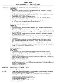 Mortgage Assistant Resume Samples Velvet Jobs
