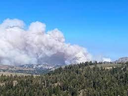 Tamarack Fire at 6,600 acres, 0 ...