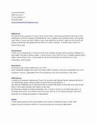 Shuttle Driver Job Description For Resume Best Of Professional